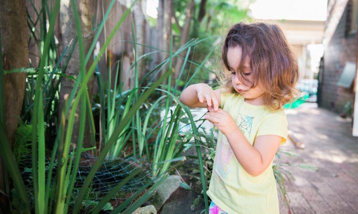 Infant in Montessori Balmain garden